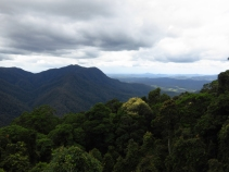 Skywalk view from Dorrigo