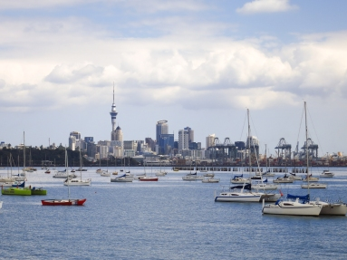 Auckland city with sailboats